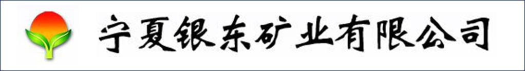宁夏银东矿业有限公司